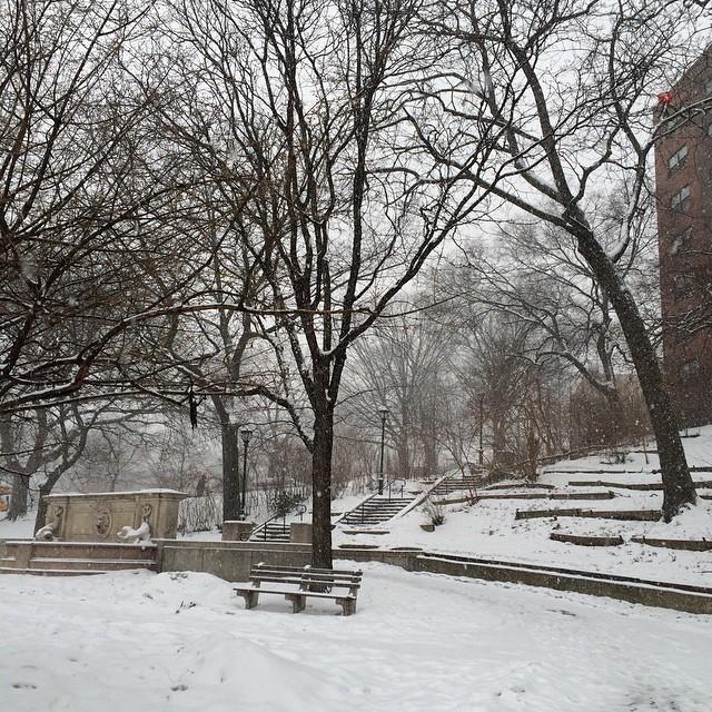 Winter wonderland of the Bronx #snowww #smarch