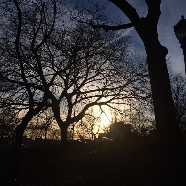 Macombs Dam Park, Bronx, NY #theskywhereIam #spring #trees